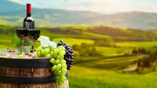 для малых производителей вина